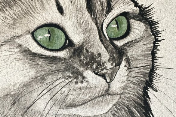 grüne Katzen-Augen