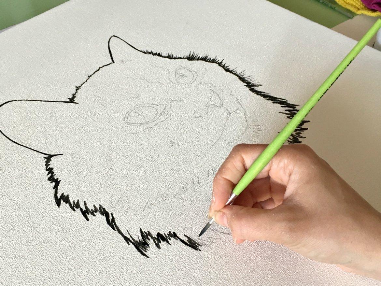Start von Katzen-Portrait